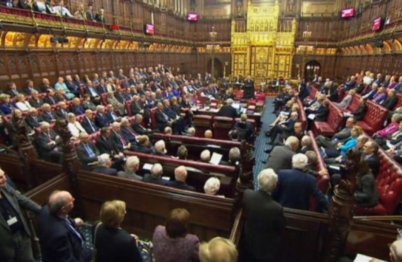 House of Lords voting on the bill